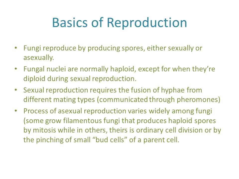 Basics of Reproduction