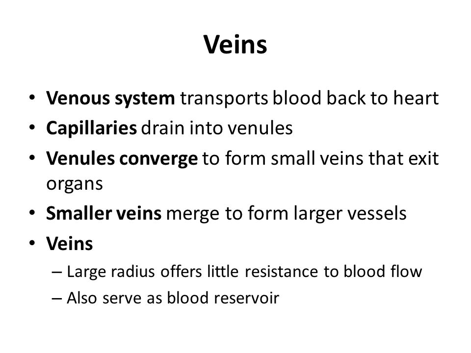 Veins Venous system transports blood back to heart