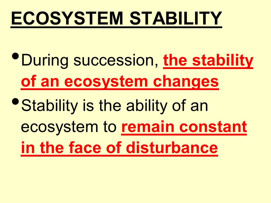 ECOSYSTEM STABILITY During succession, the stability of an ecosystem changes.