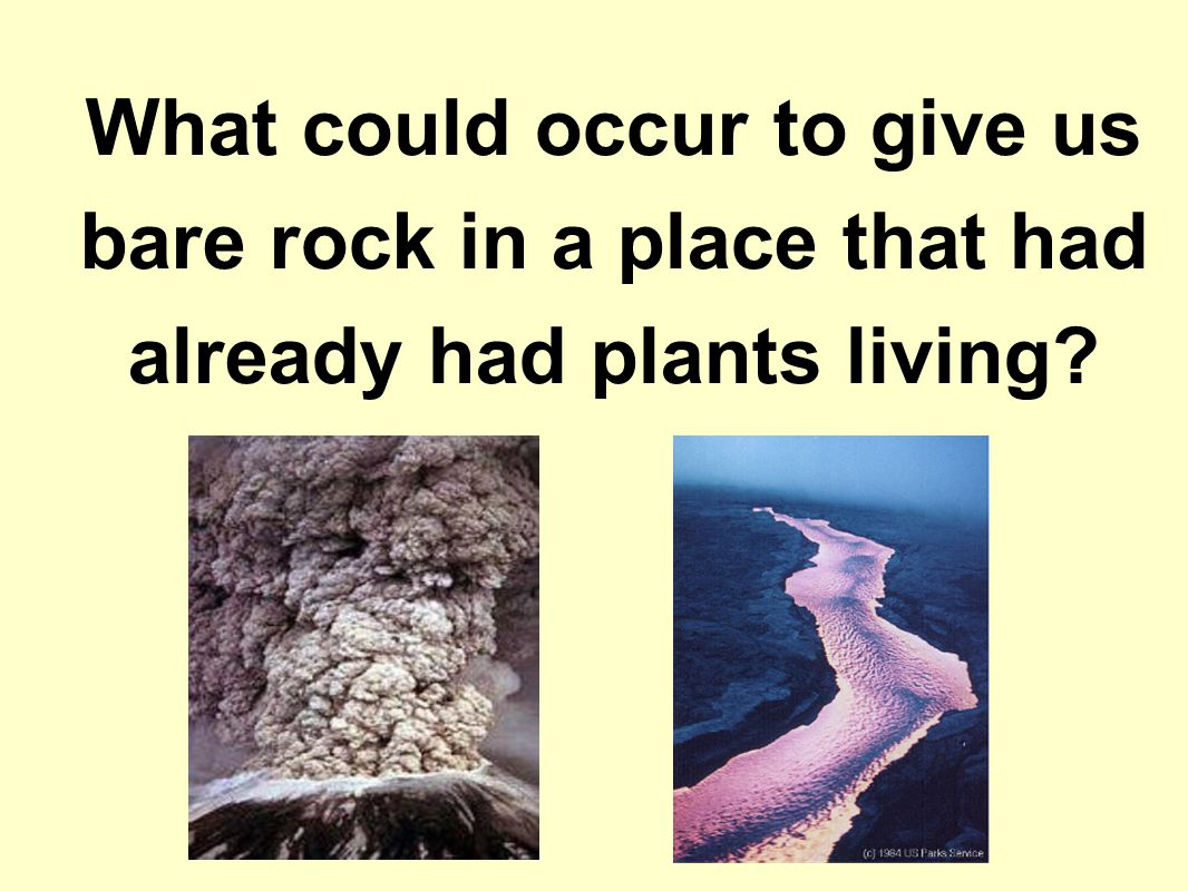 What could occur to give us bare rock in a place that had already had plants living