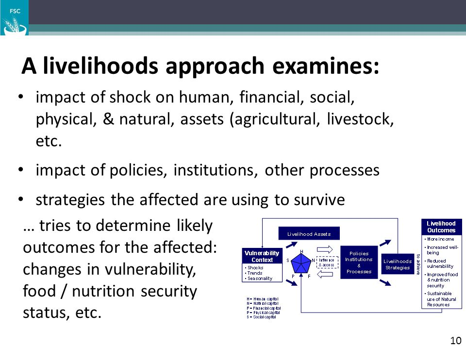 A livelihoods approach examines: