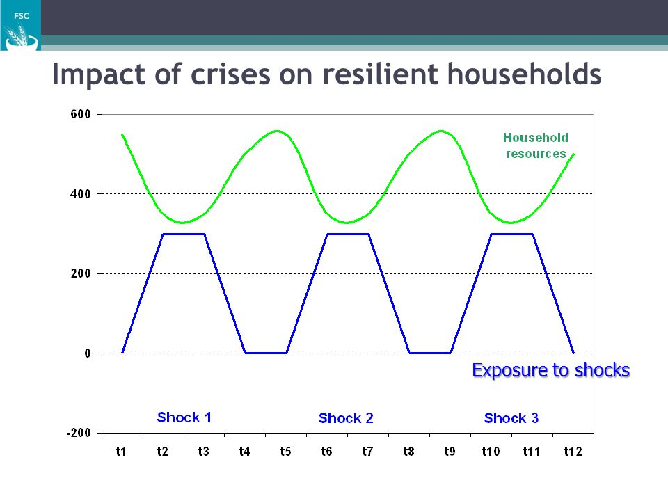 Impact of crises on resilient households