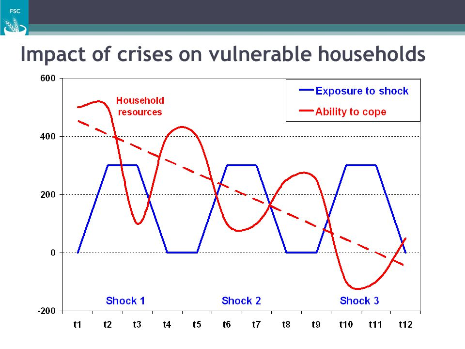 Impact of crises on vulnerable households