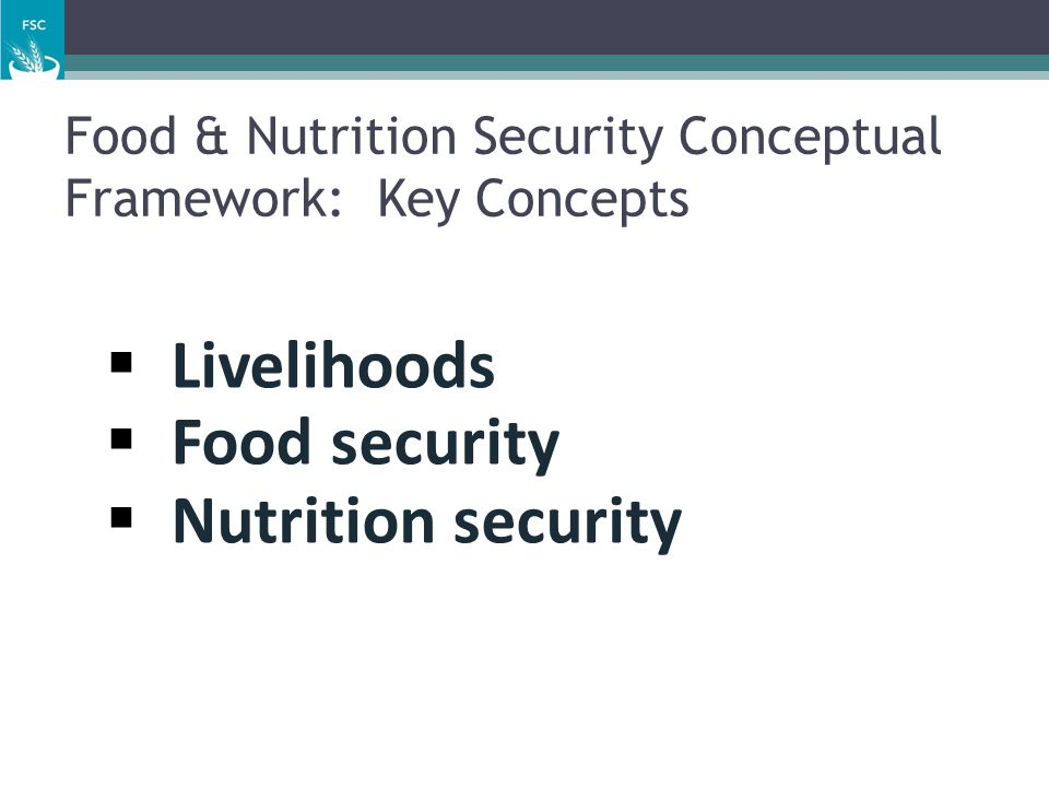 Food & Nutrition Security Conceptual Framework: Key Concepts