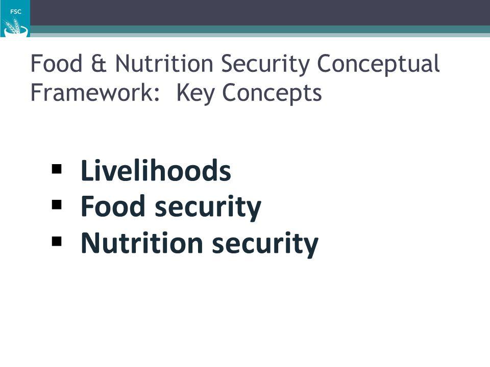 Food & Nutrition Security Conceptual Framework: Key Concepts