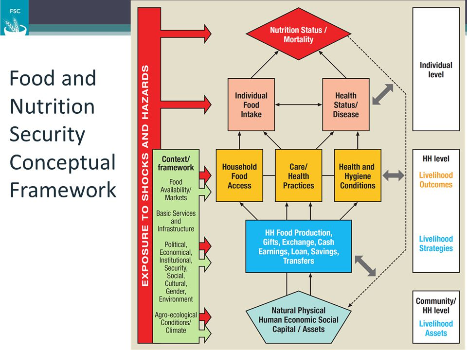 Food and Nutrition Security Conceptual Framework