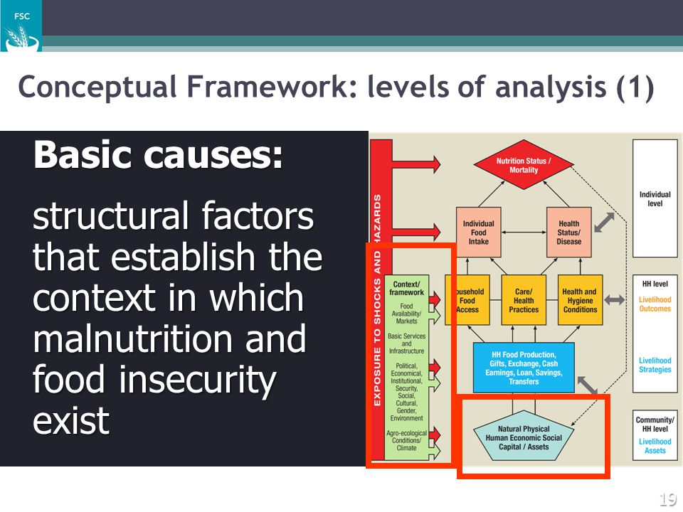 Conceptual Framework: levels of analysis (1)