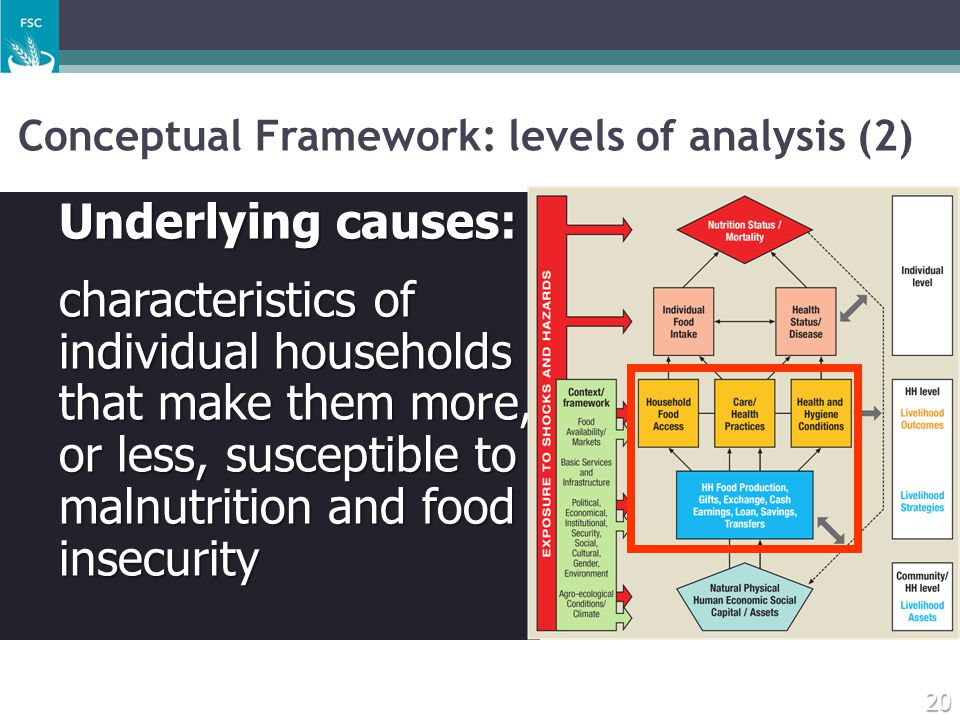 Conceptual Framework: levels of analysis (2)