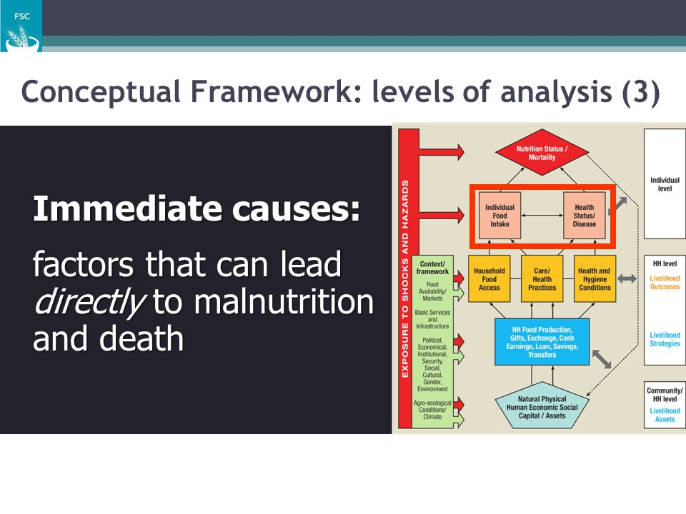 Conceptual Framework: levels of analysis (3)