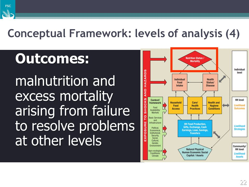 Conceptual Framework: levels of analysis (4)