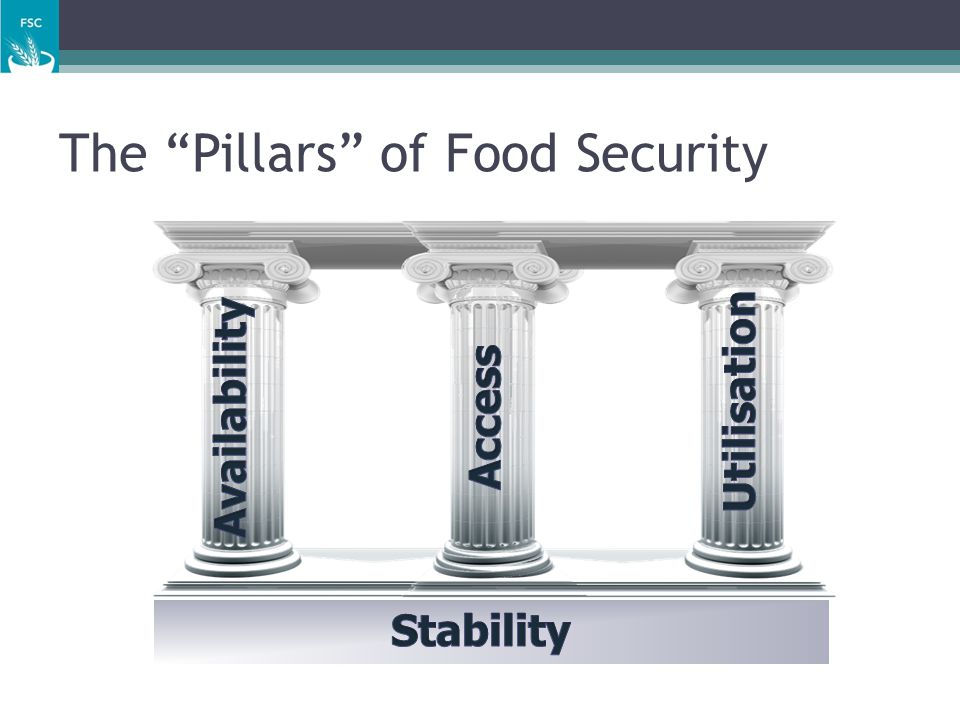 The Pillars of Food Security
