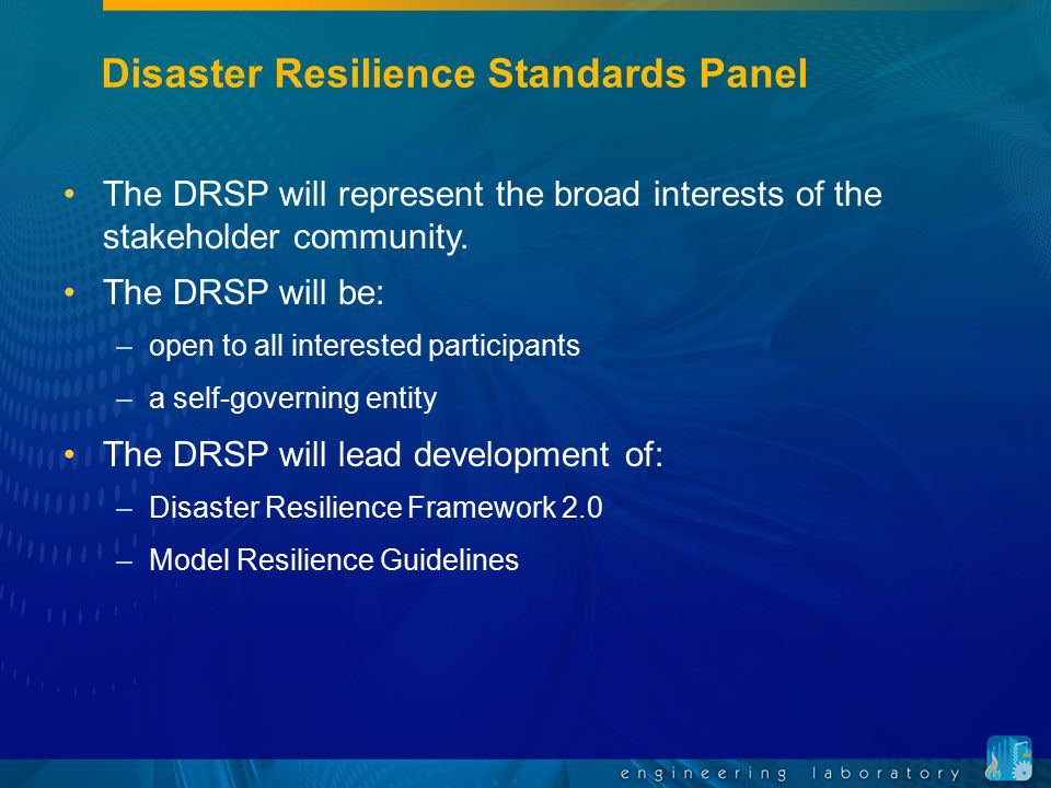 Disaster Resilience Standards Panel
