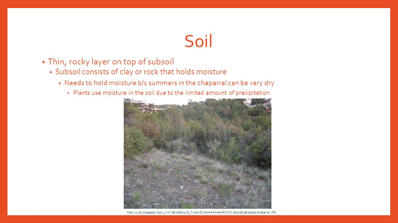 Soil Thin, rocky layer on top of subsoil