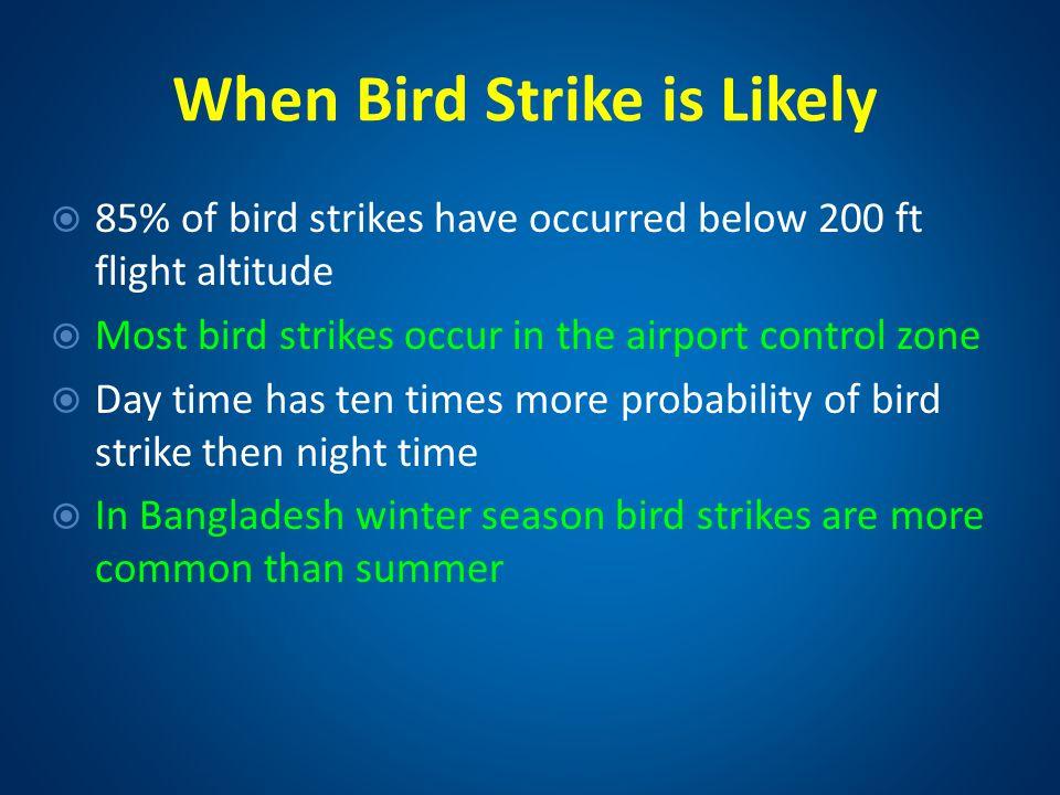 When Bird Strike is Likely