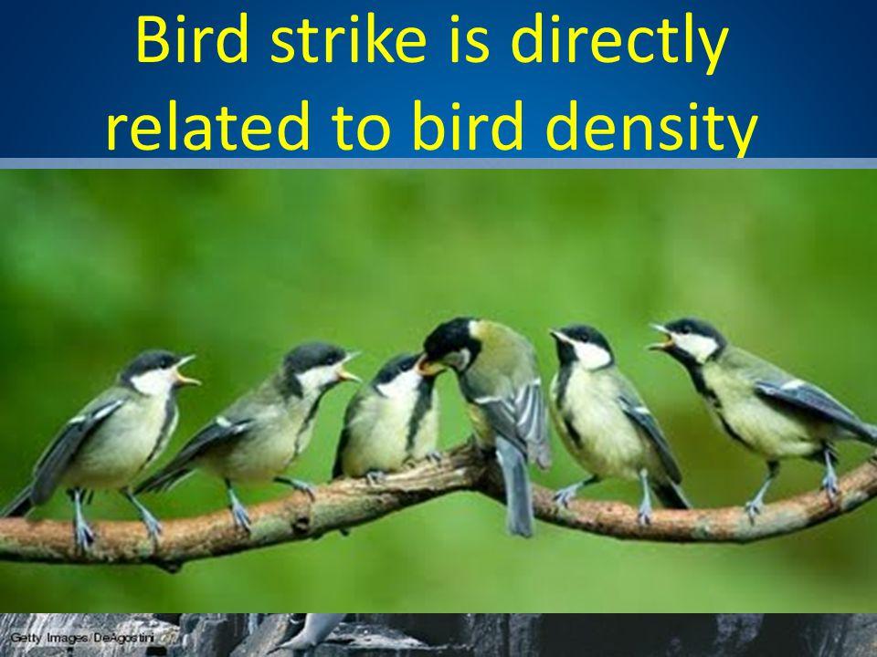 Bird strike is directly related to bird density