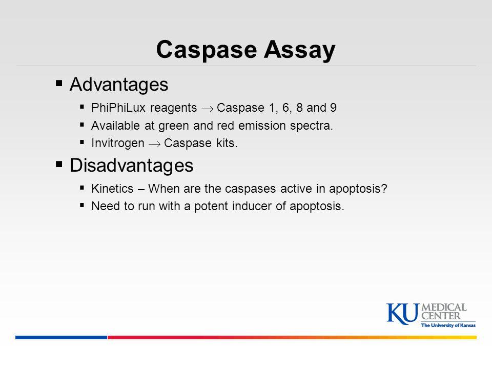 Caspase Assay Advantages Disadvantages