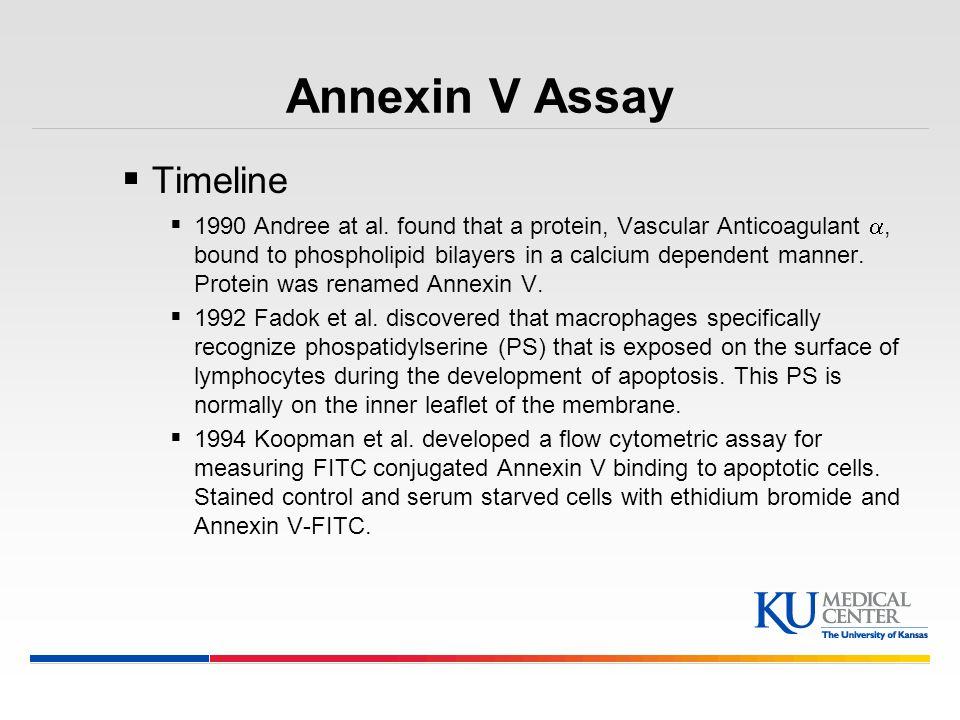 Annexin V Assay Timeline