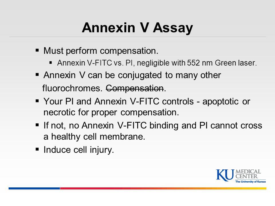 Annexin V Assay Must perform compensation.