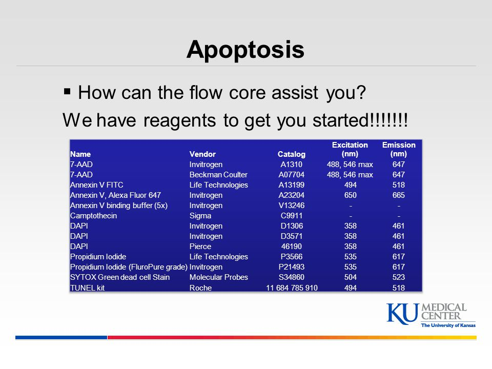 Apoptosis How can the flow core assist you