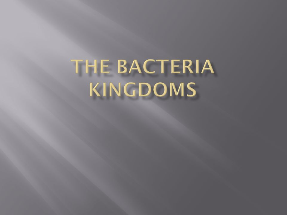 The Bacteria Kingdoms