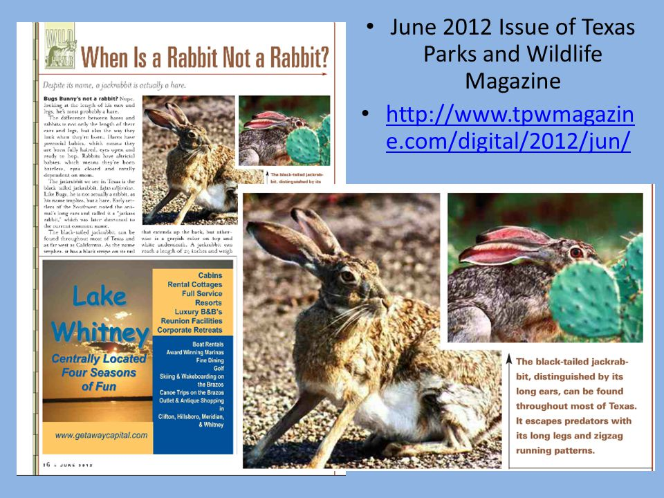 June 2012 Issue of Texas Parks and Wildlife Magazine