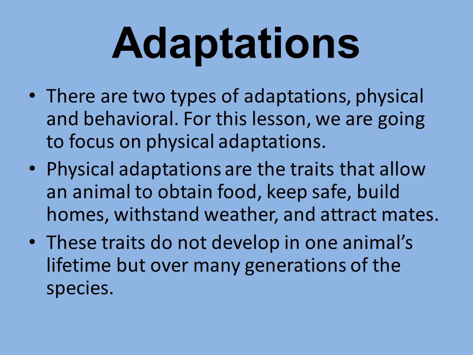 Adaptations There are two types of adaptations, physical and behavioral. For this lesson, we are going to focus on physical adaptations.
