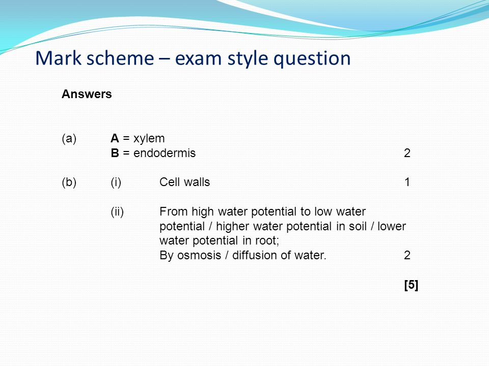 Mark scheme – exam style question