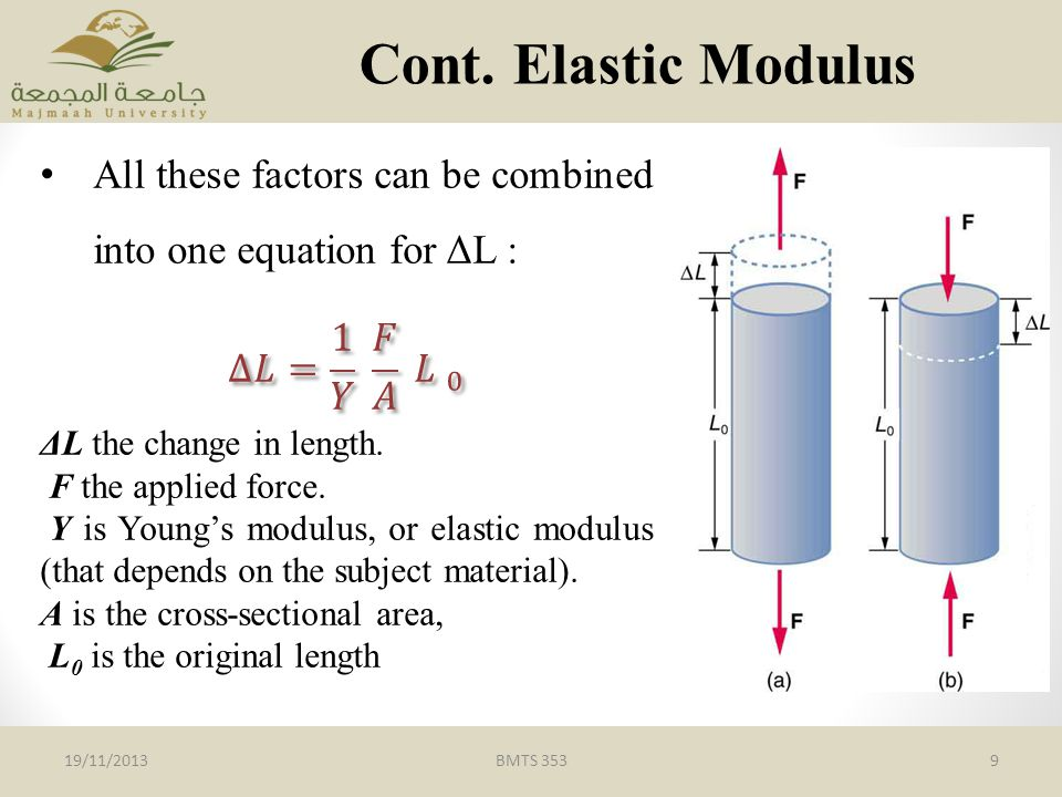 Cont. Elastic Modulus All these factors can be combined into one equation for ΔL : ∆𝐿= 1 𝑌 𝐹 𝐴 𝐿 0.