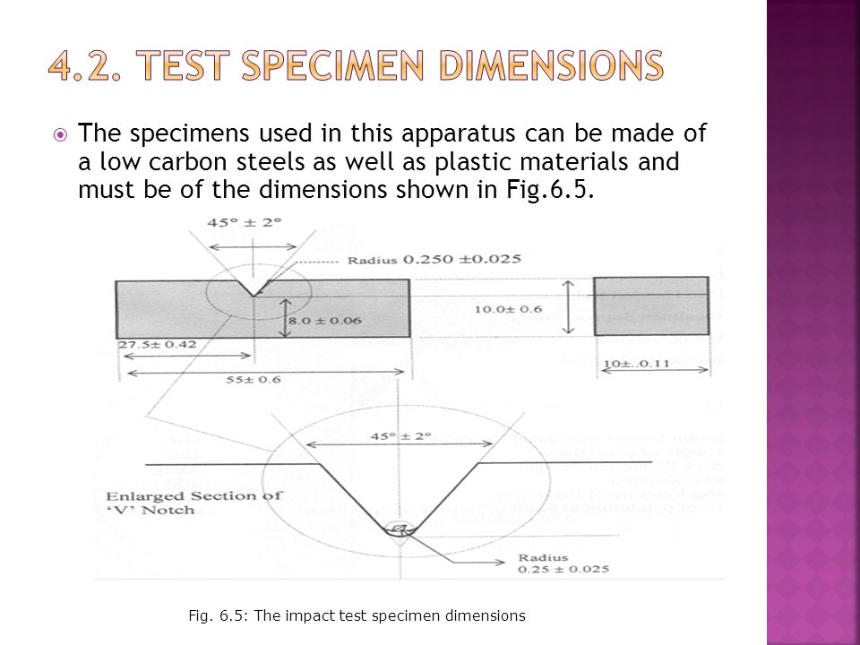 4.2. Test Specimen dimensions