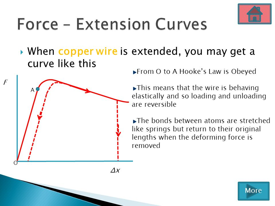 Force – Extension Curves