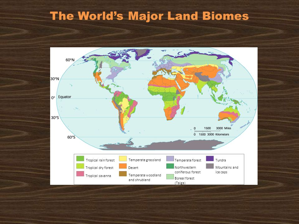 The World's Major Land Biomes