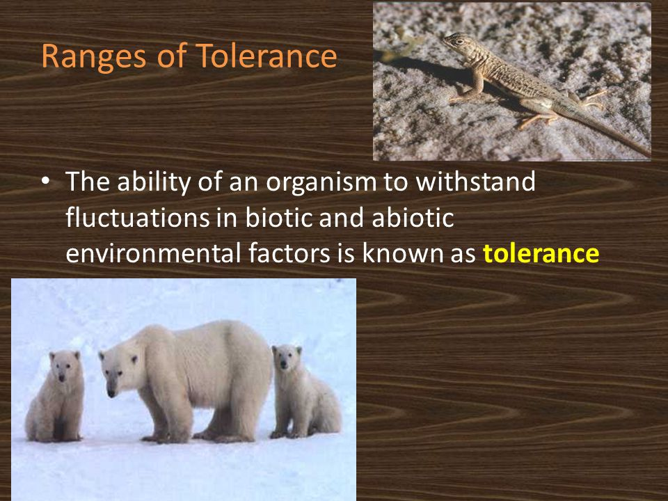 Ranges of Tolerance The ability of an organism to withstand fluctuations in biotic and abiotic environmental factors is known as tolerance.