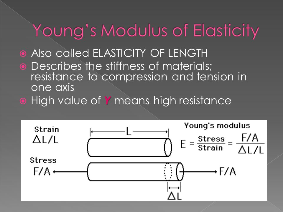 Young's Modulus of Elasticity