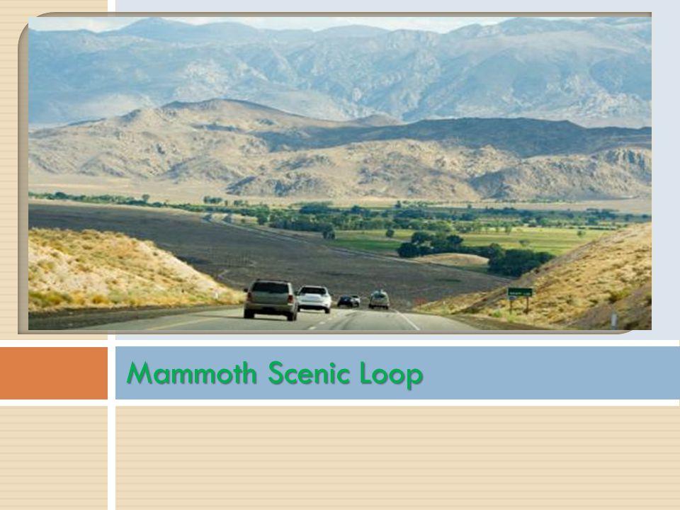 Mammoth Scenic Loop