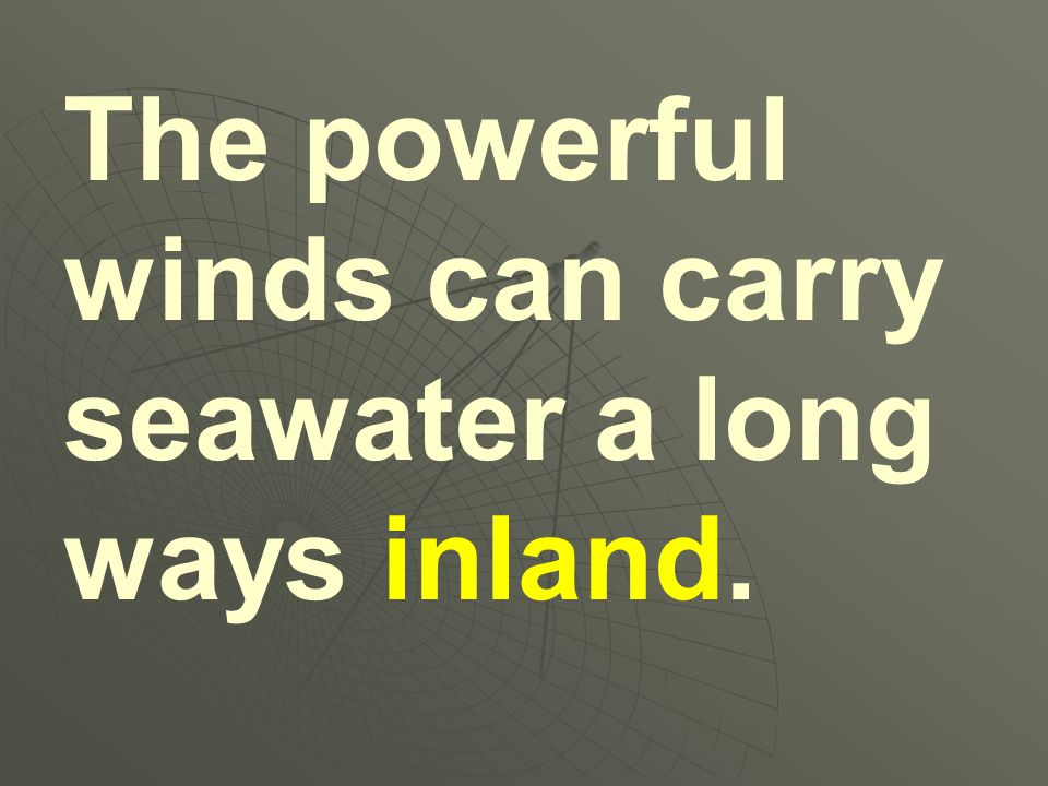 The powerful winds can carry seawater a long ways inland.