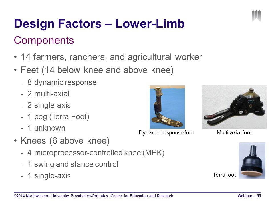 Design Factors – Lower-Limb