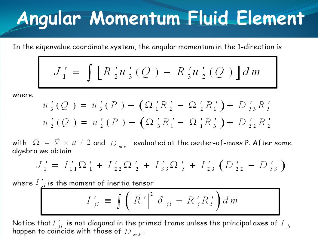 Angular Momentum Fluid Element