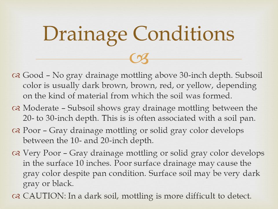 Drainage Conditions