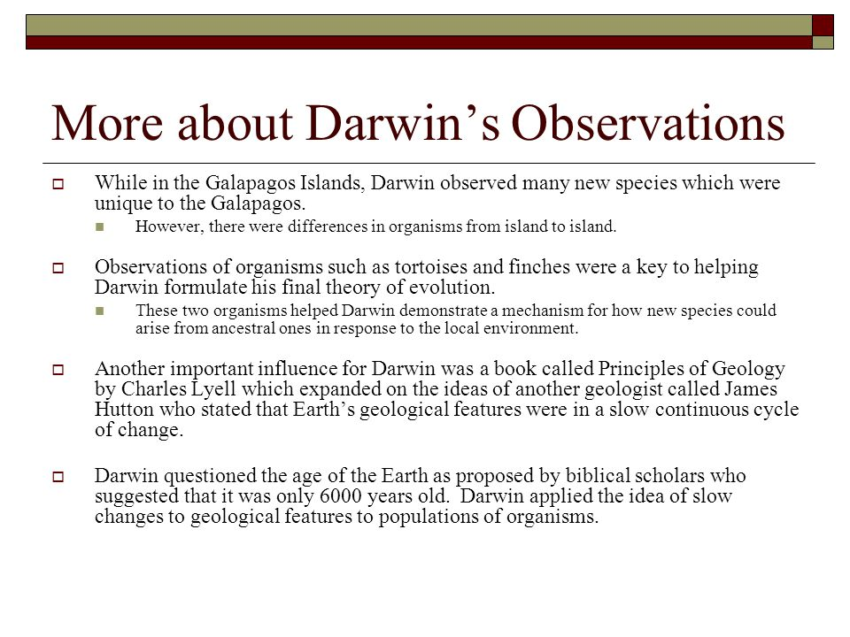 More about Darwin's Observations