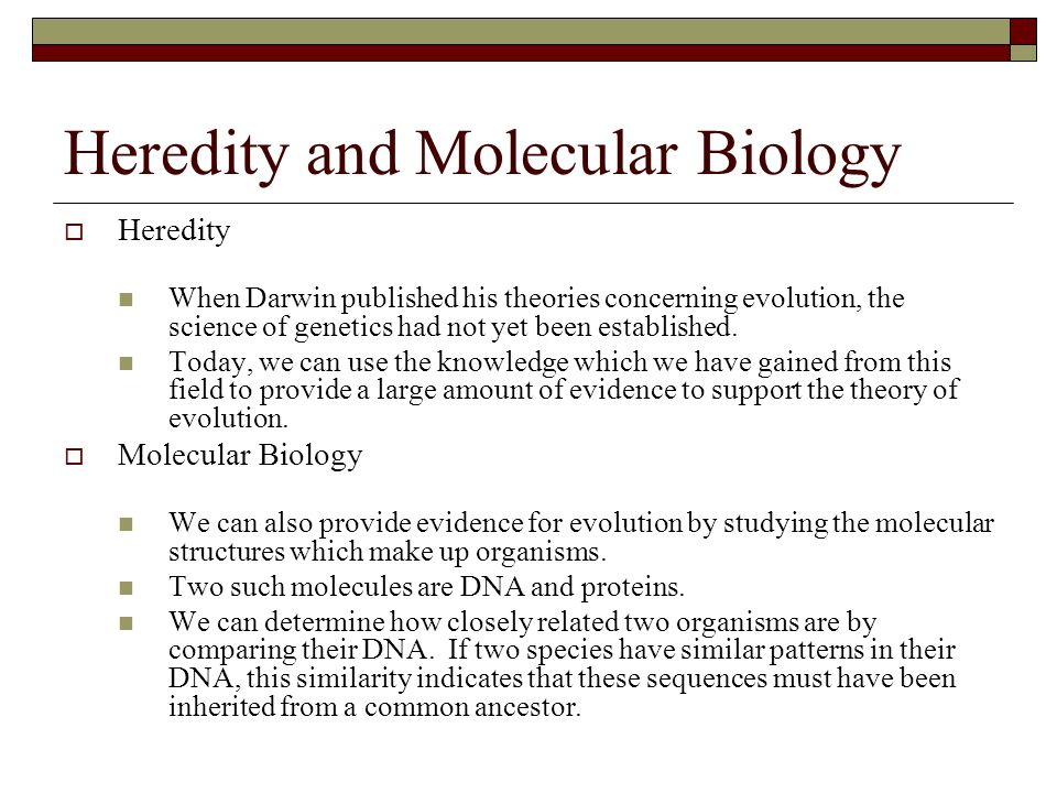 Heredity and Molecular Biology