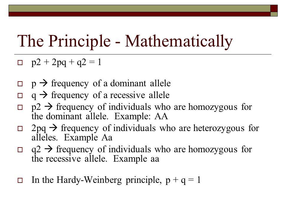 The Principle - Mathematically