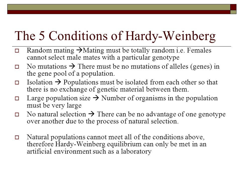 The 5 Conditions of Hardy-Weinberg
