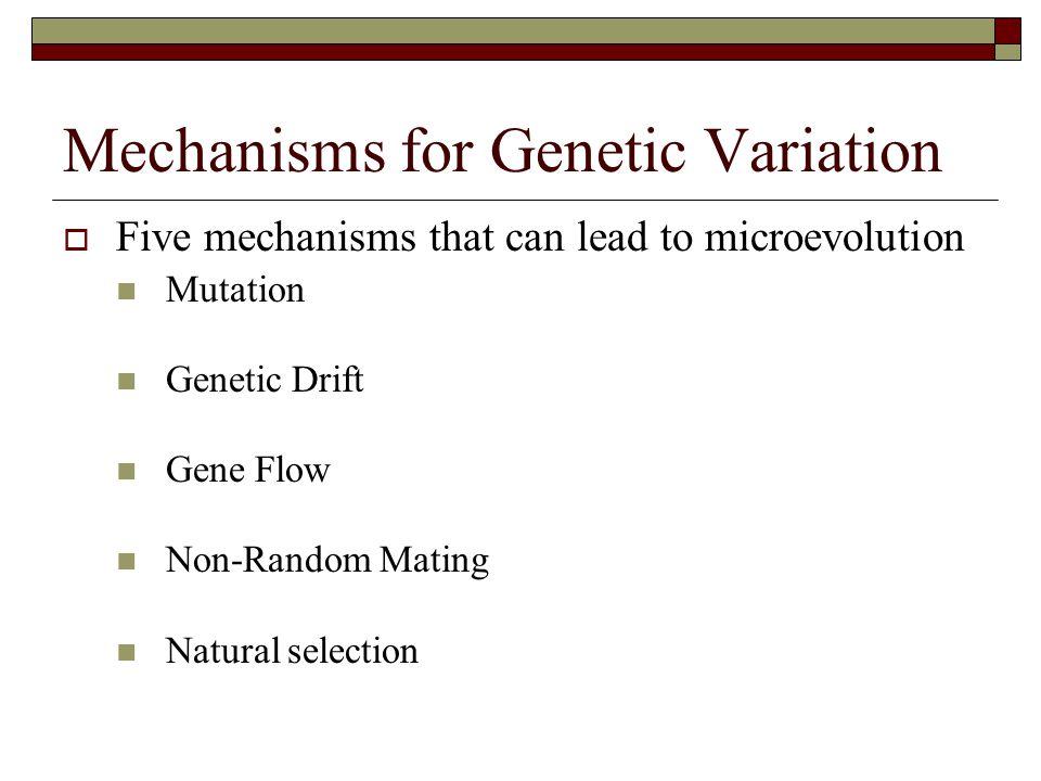 Mechanisms for Genetic Variation