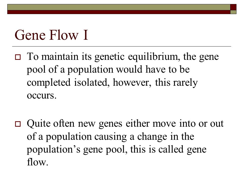 Gene Flow I To maintain its genetic equilibrium, the gene pool of a population would have to be completed isolated, however, this rarely occurs.