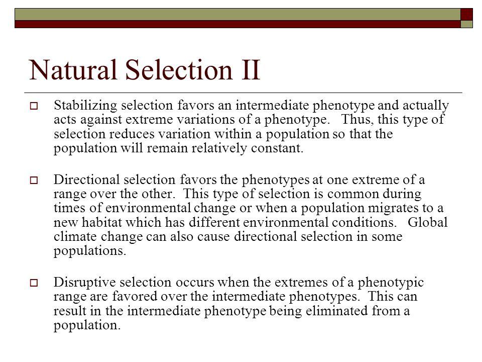 Natural Selection II