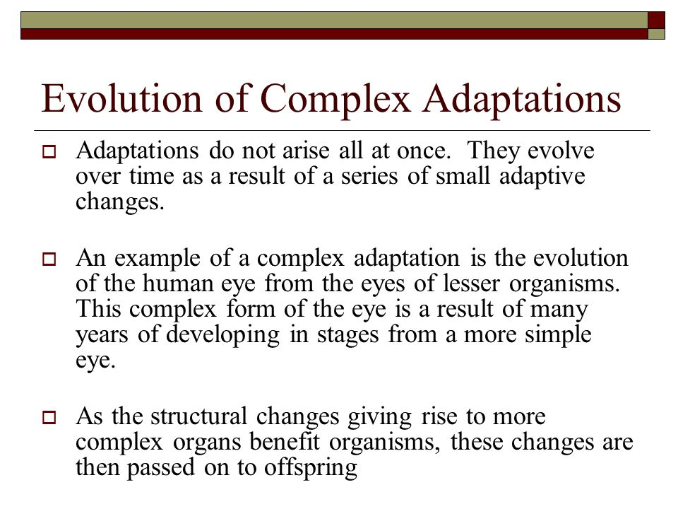 Evolution of Complex Adaptations