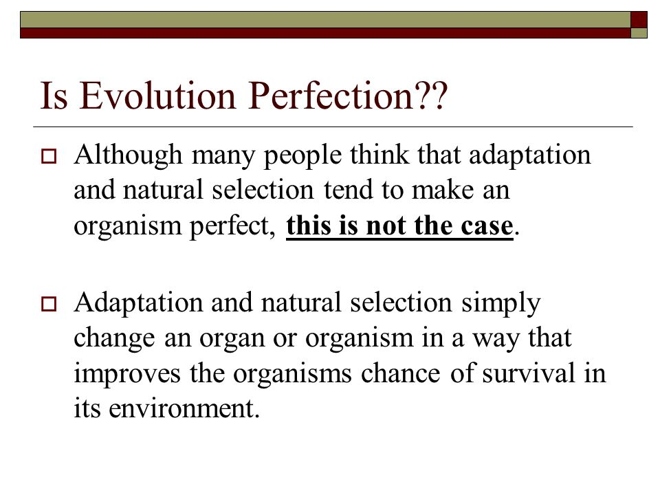 Is Evolution Perfection