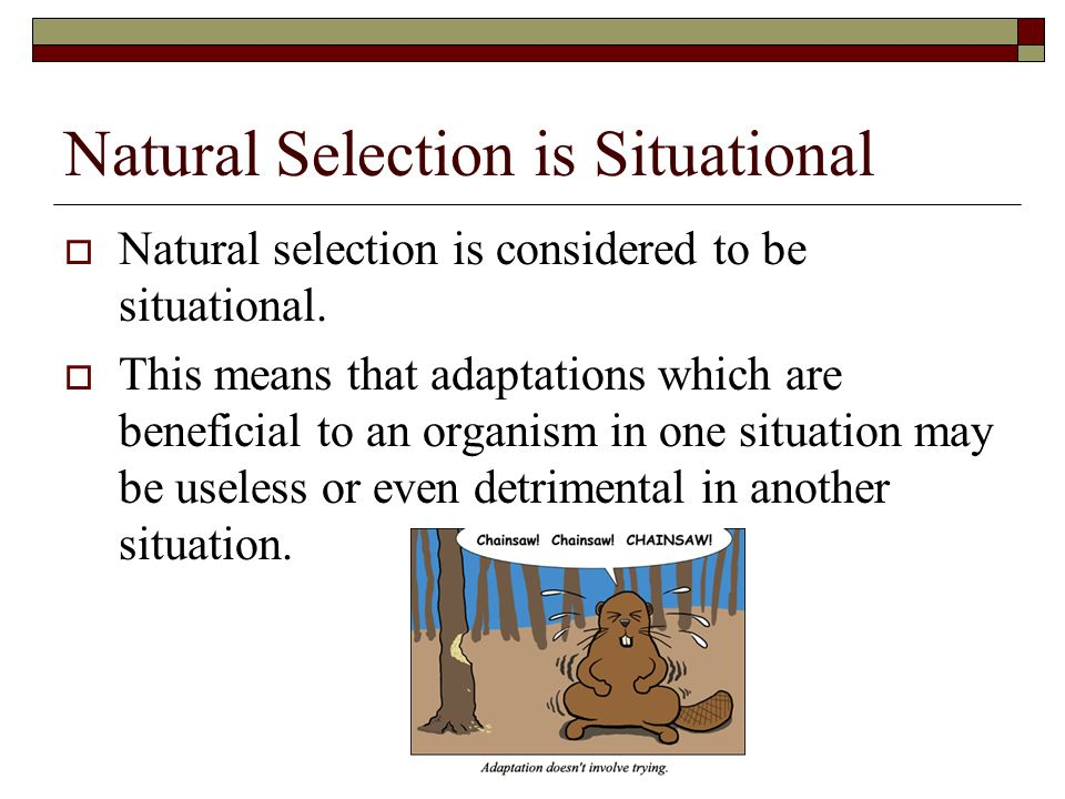 Natural Selection is Situational