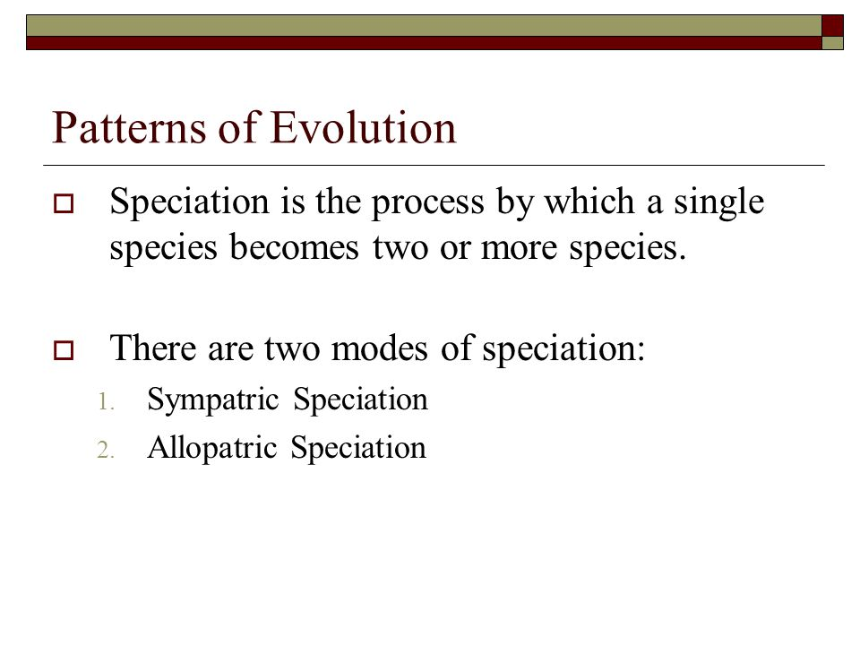 Patterns of Evolution Speciation is the process by which a single species becomes two or more species.