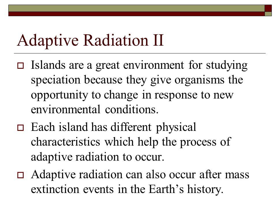 Adaptive Radiation II